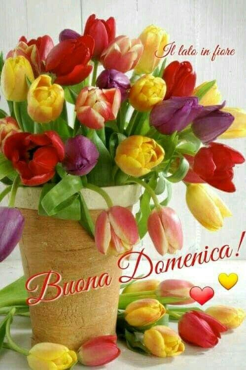 Auguri Pasqua Francesco Immagini domenica