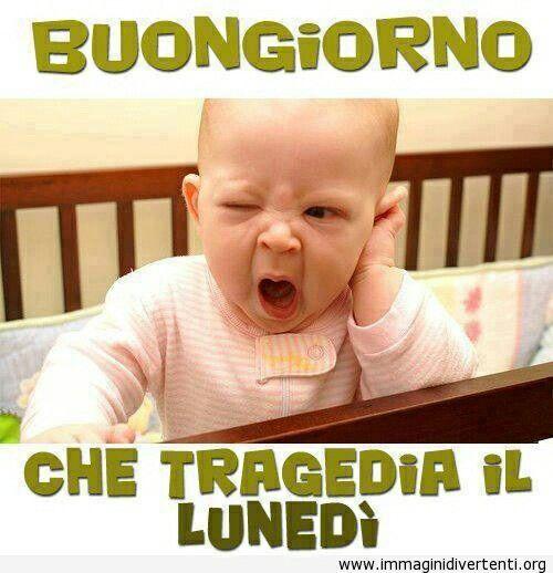 Scienze Pedagogiche Torino Immagini lunedi
