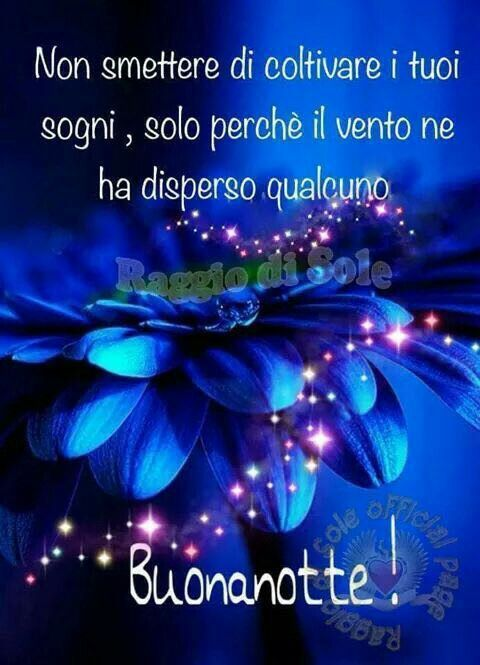 Buona Notte Bella Buonanotte Immagini