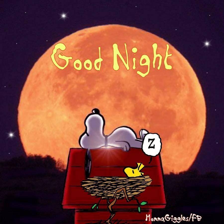 Buonanotte Particolare Buonanotte Immagini
