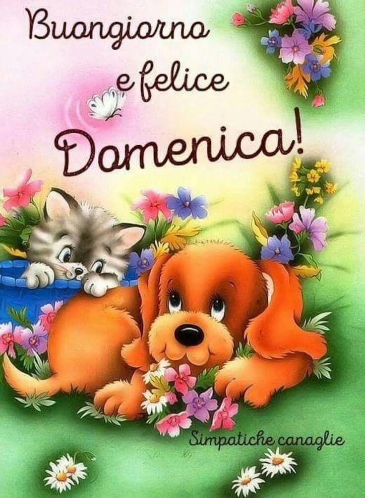 Buongiorno Al Mio Amore Immagini