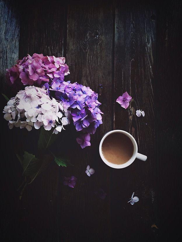Caffè Al Ginseng Immagini