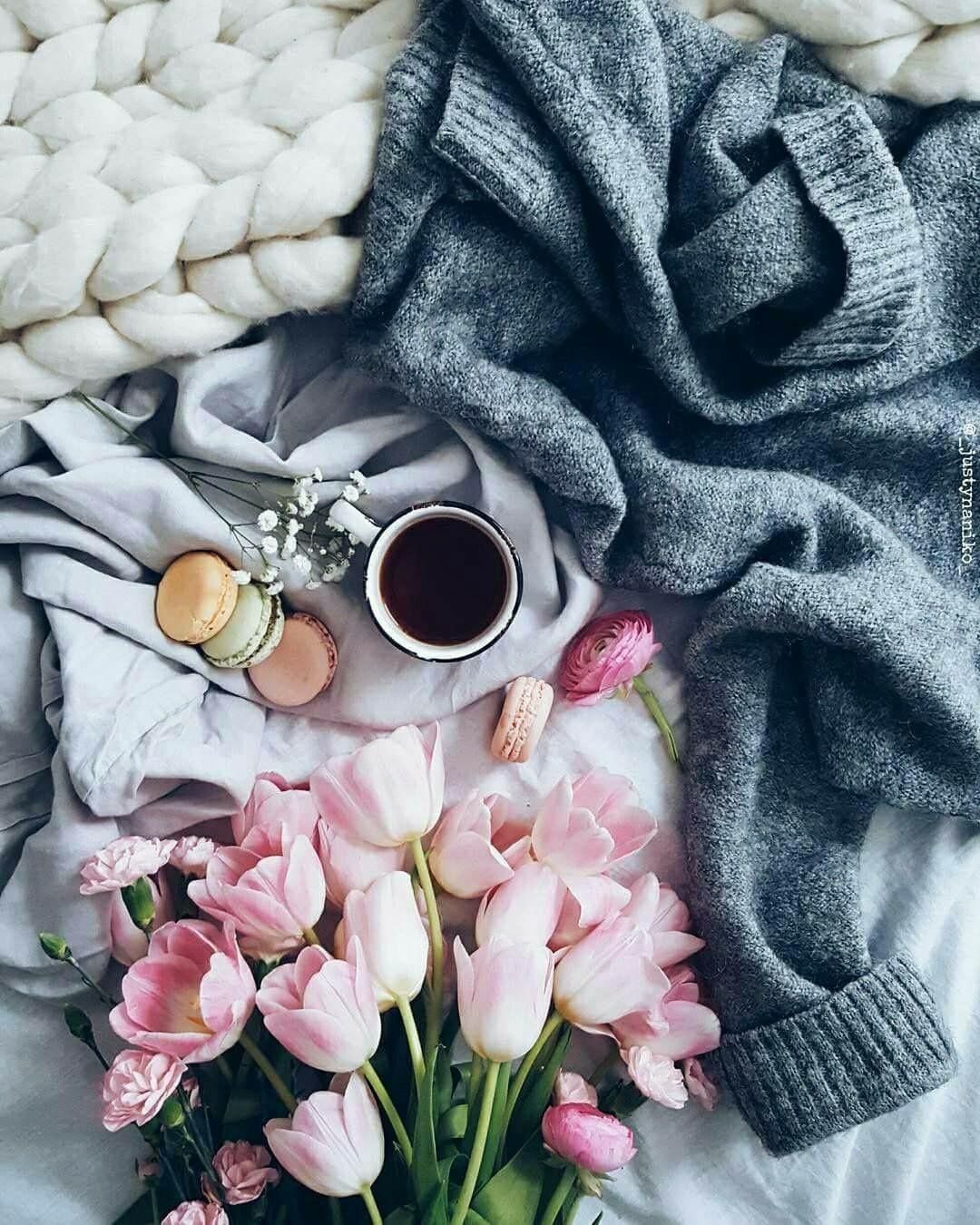 Caffè Ginseng Immagini