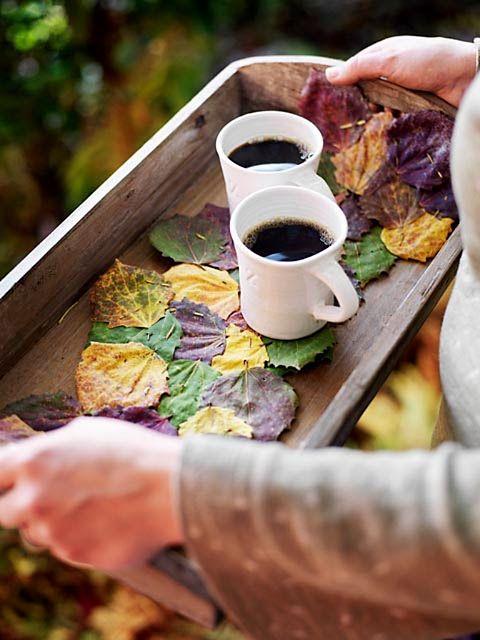 Caffè Solubile Immagini
