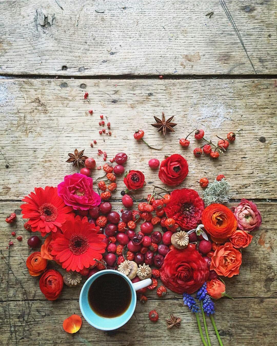 Caffe Moreno Immagini