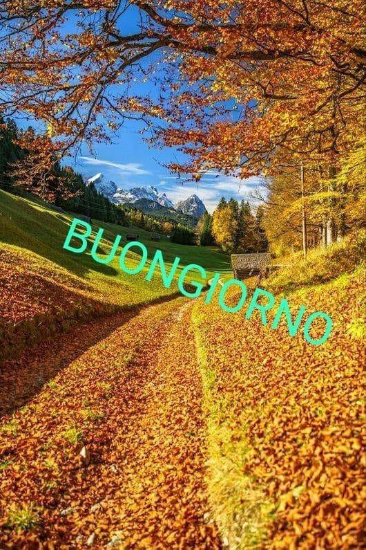 Cartoline Del Buongiorno Immagini
