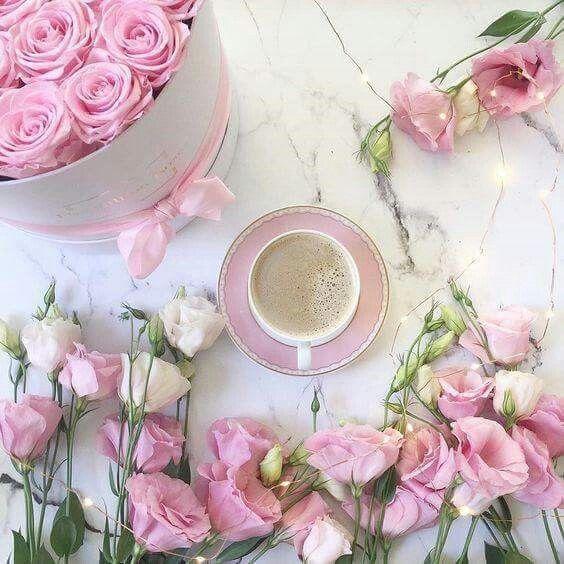 Cialde Caffè Immagini