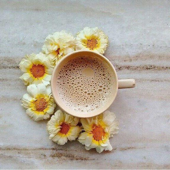 Cialde Caffè Migliori Immagini