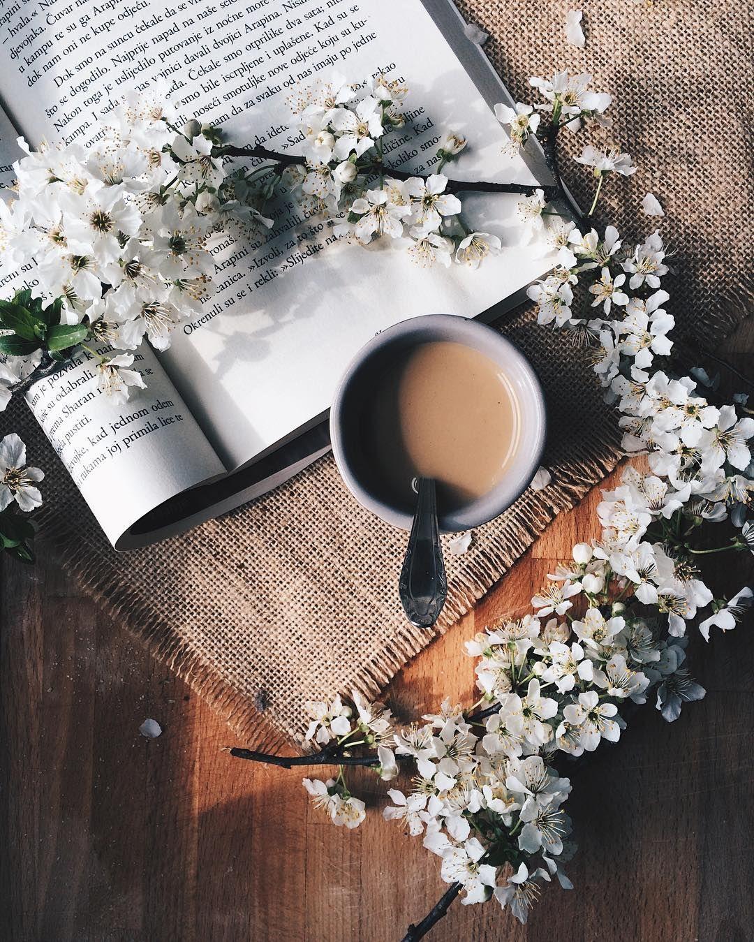 Cialde Da Caffè Immagini