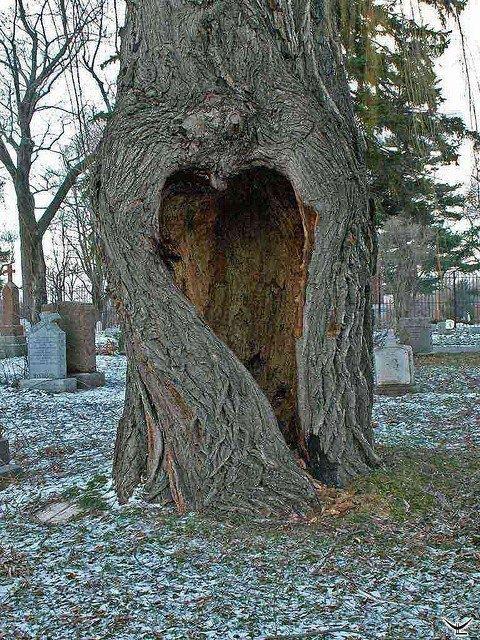 Cuori Belle Immagini Romantiche