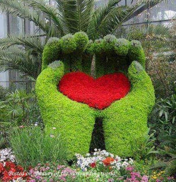Cuori Immagini Cuore Rosso