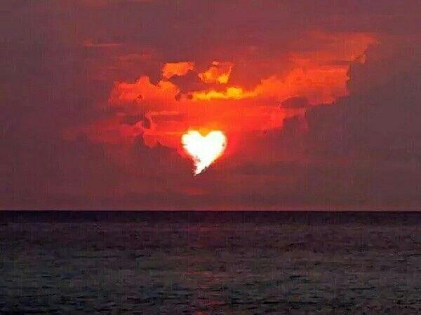 Cuori Immagini Di Buongiorno Amore