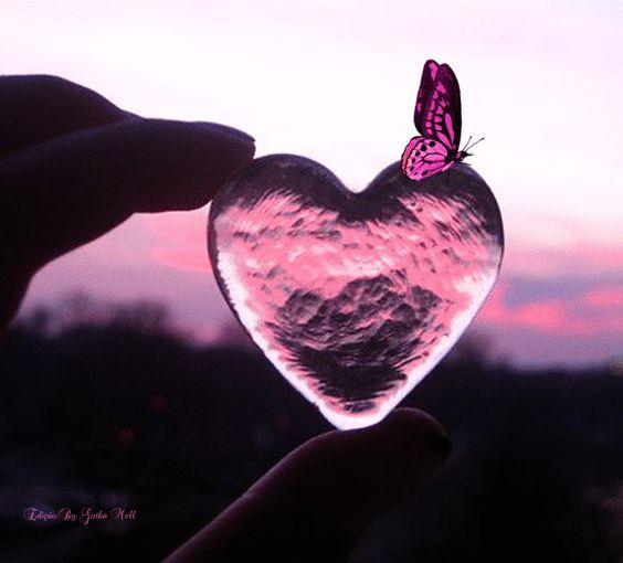 Cuori Immagini Romantiche Di Buongiorno