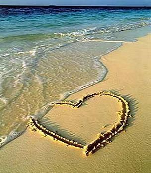 Cuori Immagini Vero Amore