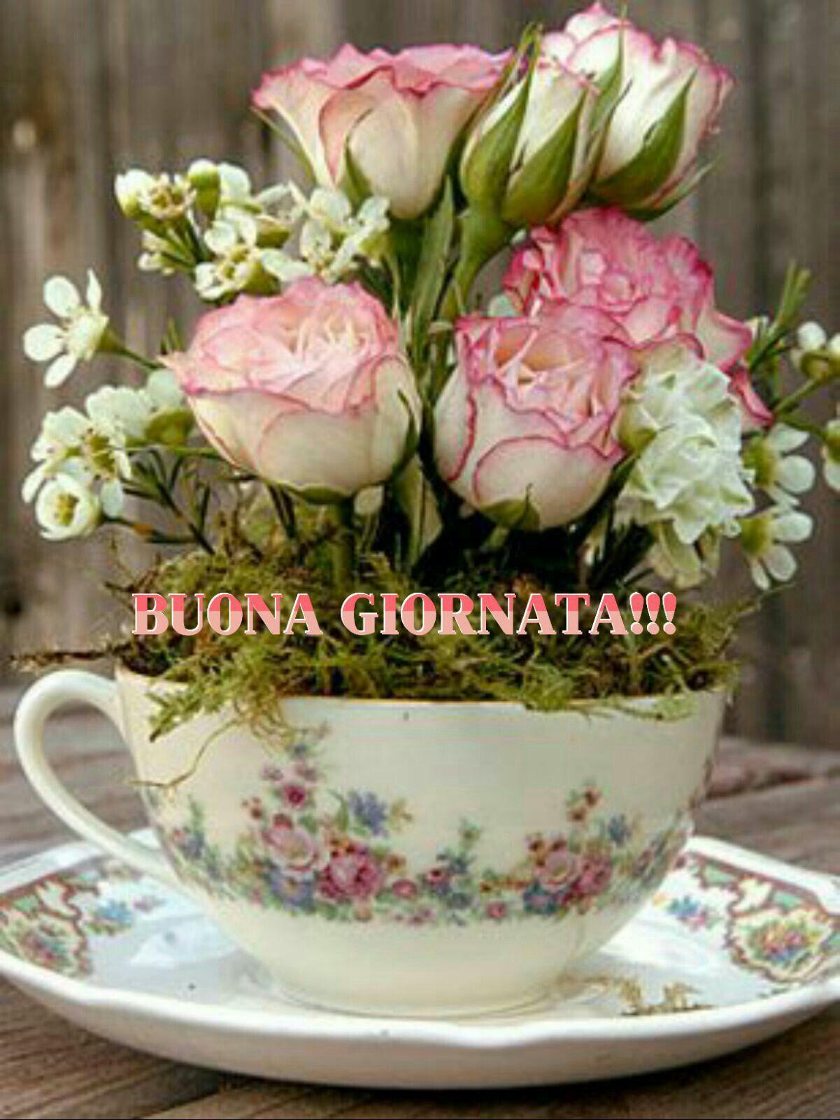 Dediche Buongiorno Amore Buona Giornata Immagini
