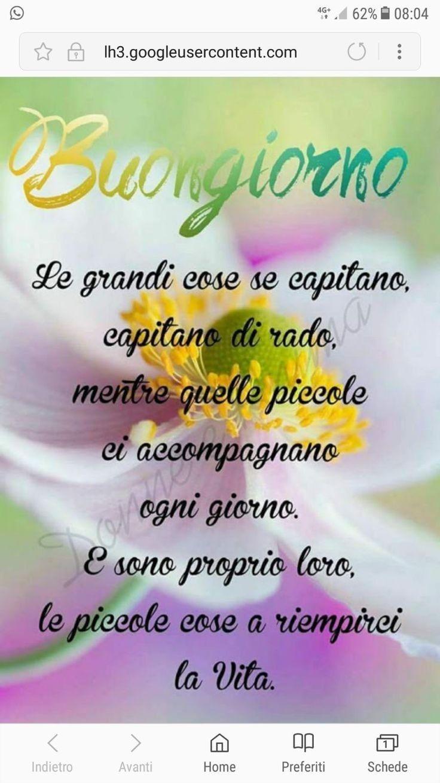 Frasi Belle Buongiorno Immagini