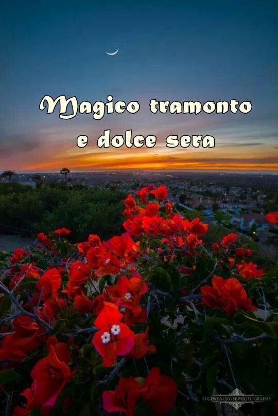 Frasi E Immagini Sulla Buonanotte Buona Serata Immagini