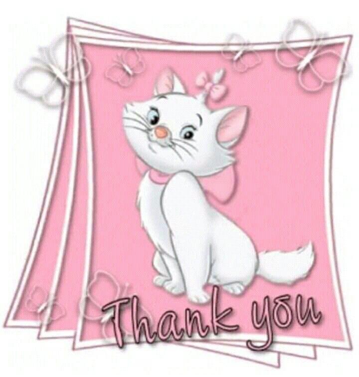 Frasi Per Ringraziare Gli Amici Immagini