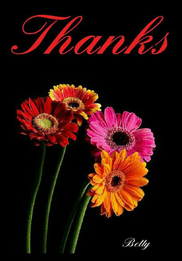 Frasi Ringraziamento Immagini