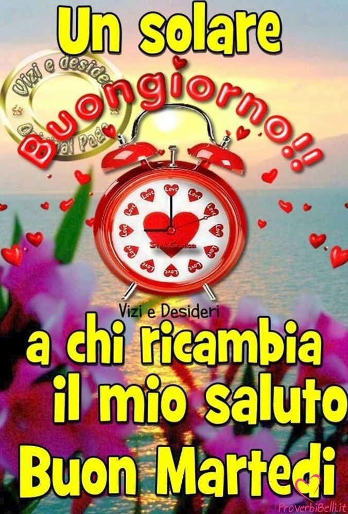Italia Uno Streaming Martedì Immagini