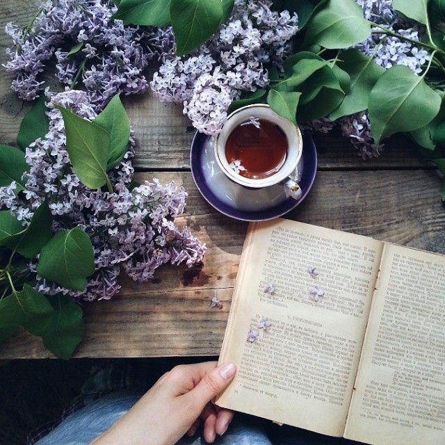 Macchina Caffè Grani Immagini