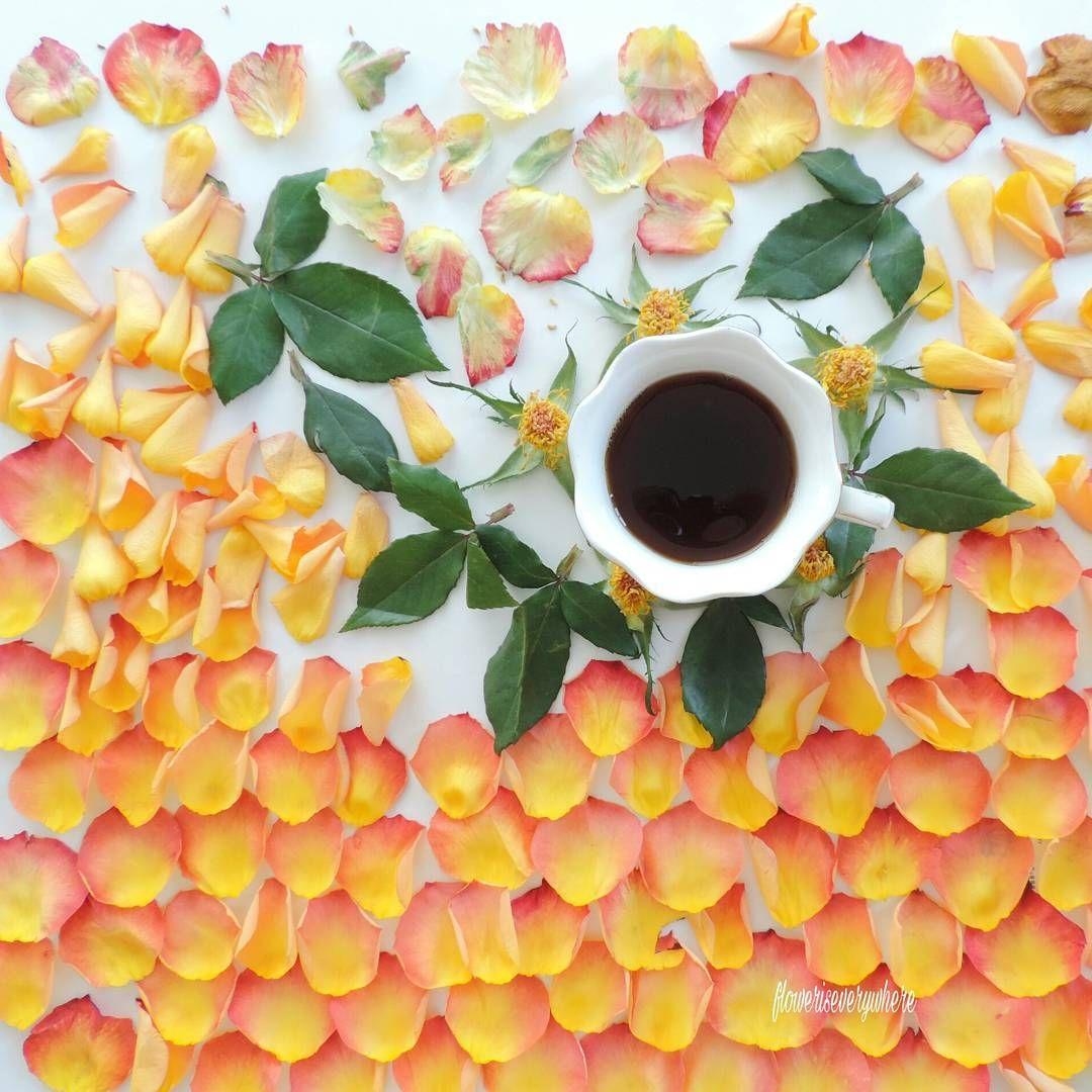 Macchina Caffè Macinato Immagini