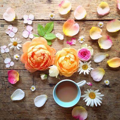 Miscela Di Caffe Immagini