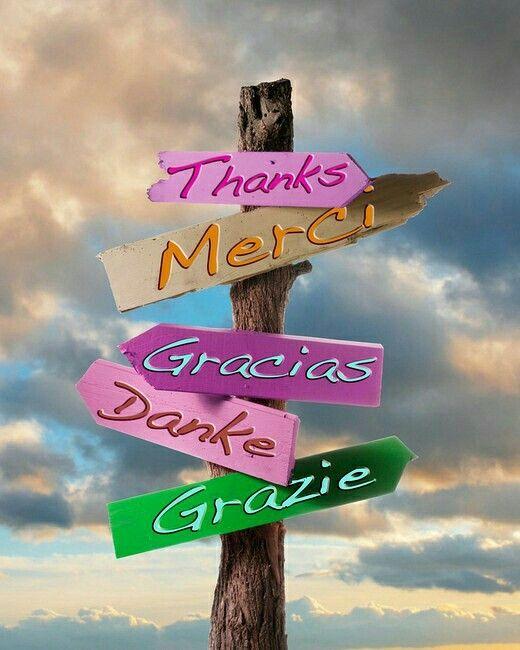 Parole Di Ringraziamento Ad Un Amico Immagini