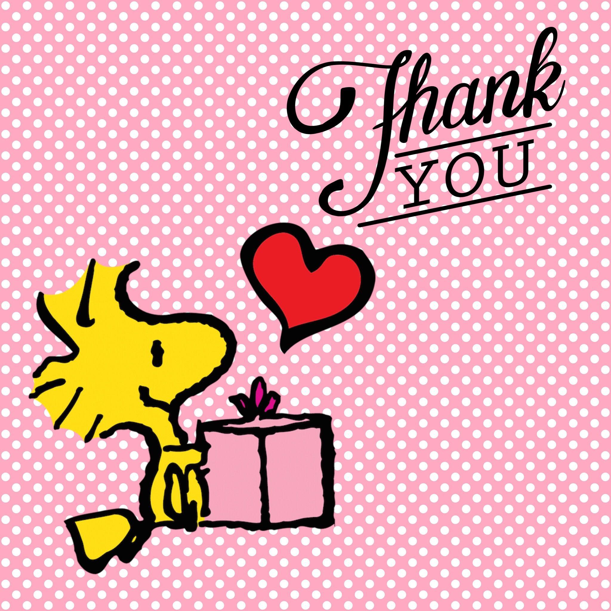 Parole Di Ringraziamento E Gratitudine Immagini