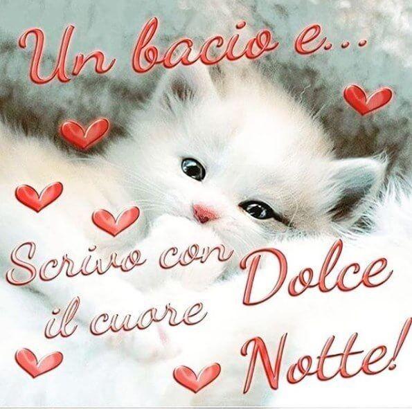 Serena Notte Frasi Buonanotte Immagini